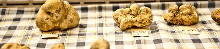 83th Alba International White Truffle Fair, from 12/10 to17/11 JUST SATURDAY AND SUNDAY
