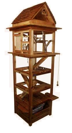 make this an outdoor cat tower kitty litter box on one level enclosed for privacy with cat door opening into studio the other levels enclosed in chicken