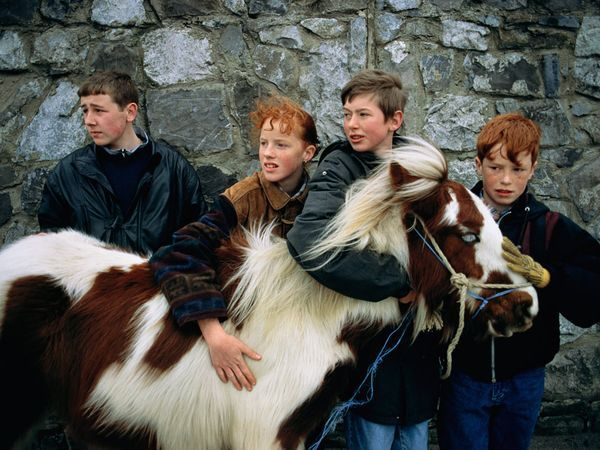"""""""He's quiet and easy to catch,"""" says Lee Johnson, at left, of his pony Gypsy. Lee tends his charge in a stable behind his home in the Clondalkin district of Dublin, a metropolis where cars still dodge horse-drawn carts hauling vegetables to market."""