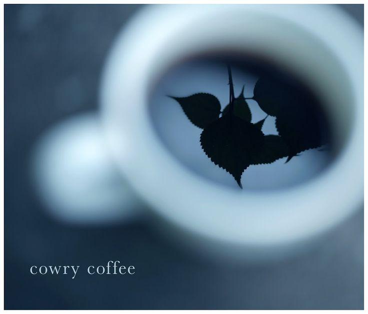 cowry coffee