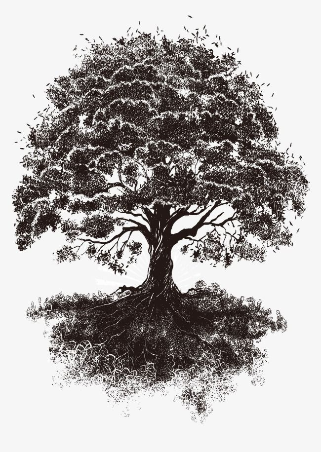 Millions Of Png Images Backgrounds And Vectors For Free Download Pngtree Tree Tattoo Art Tree Tattoo Tree Of Life Tattoo