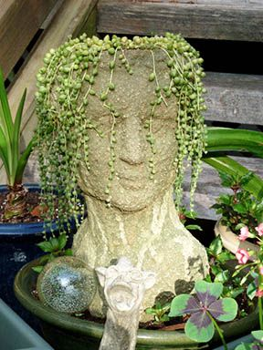 Looking forward to receiving my planter. I purchased one from you a while ago and figured that it was time for a new companion for her (she is tired of hanging out with the gargoyle!).