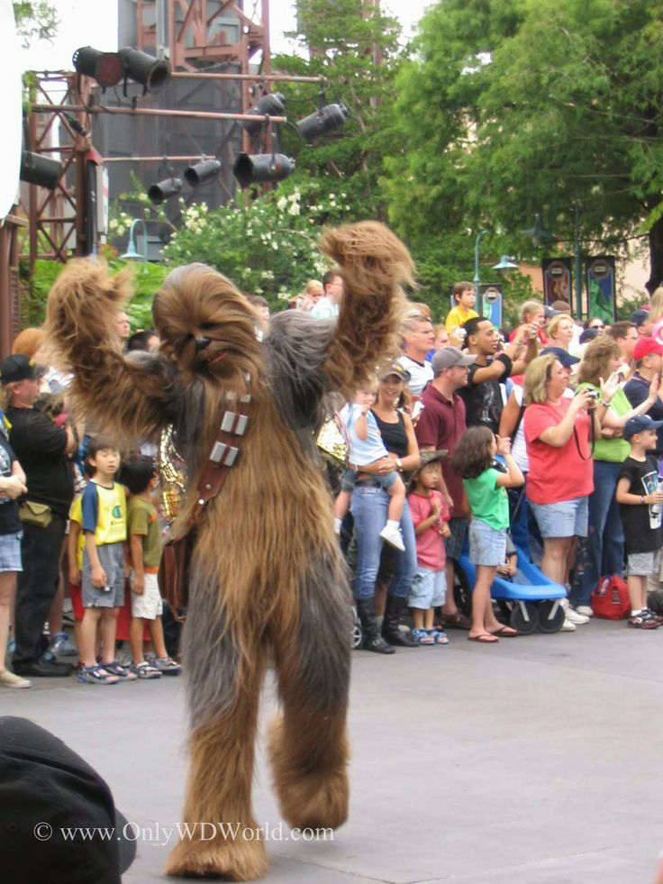 Star Wars Day at Sea | Seasonal Events | Disney Cruise Line