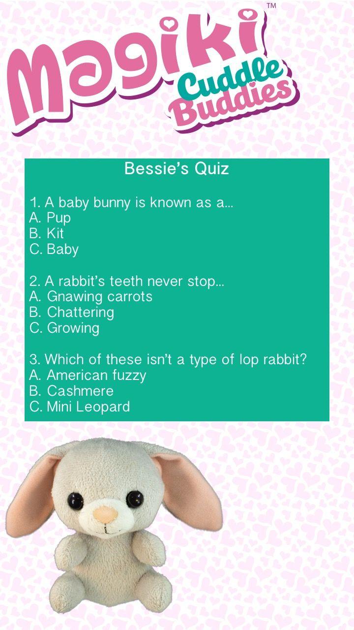 Magiki Cuddle Buddies kids animal quiz  Bessie the Bunny