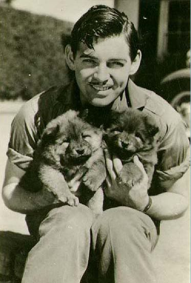 There is every chance I have pinned this before but I don't care - it's Clark Gable. With puppies :)