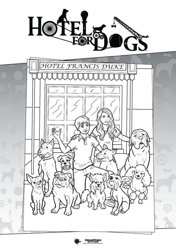 31 best steves images on Pinterest Coloring books, Vintage - best of coloring pages for adults dogs