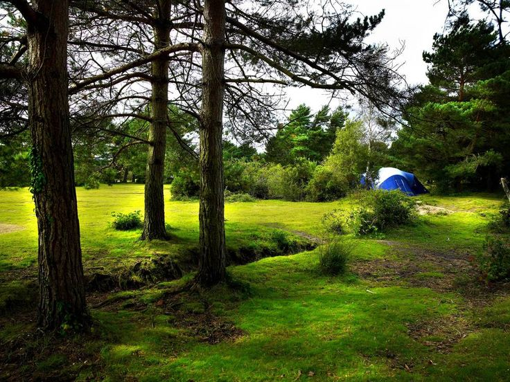 118 Best Images About Beautiful Campsites On Pinterest Tent Camping Camps And Pools