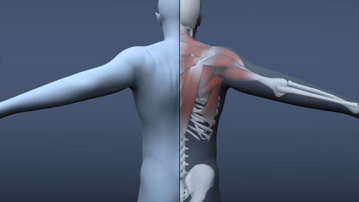 Shoulder Deformation Test on Vimeo