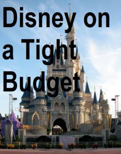 If you wanna save at Disney this year than you MUST read this 6 part Disney on a Tight Budget guide.....
