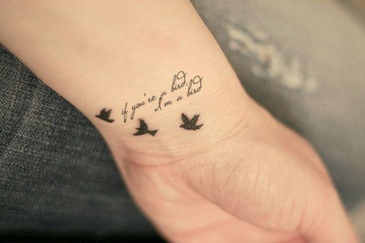 Aves y Frase: If you´re a bird, I´m a bird