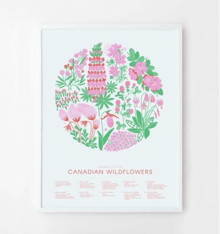 CANADIAN WILDFLOWERS | SHADES OF PINK POSTER created by CABIN JOURNAL