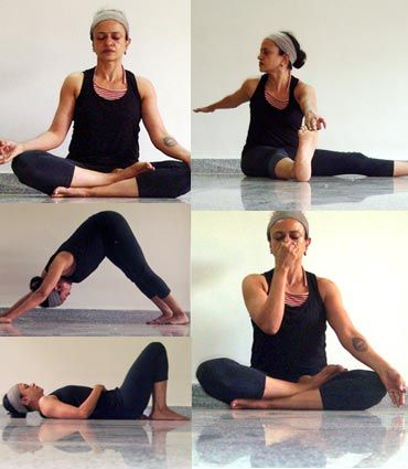 yoga poses to lower blood pressure  gym time  pinterest