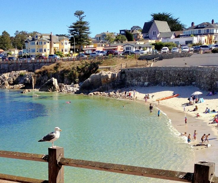 11 best images about monterrey janice 39 s place on for Best beach in monterey ca