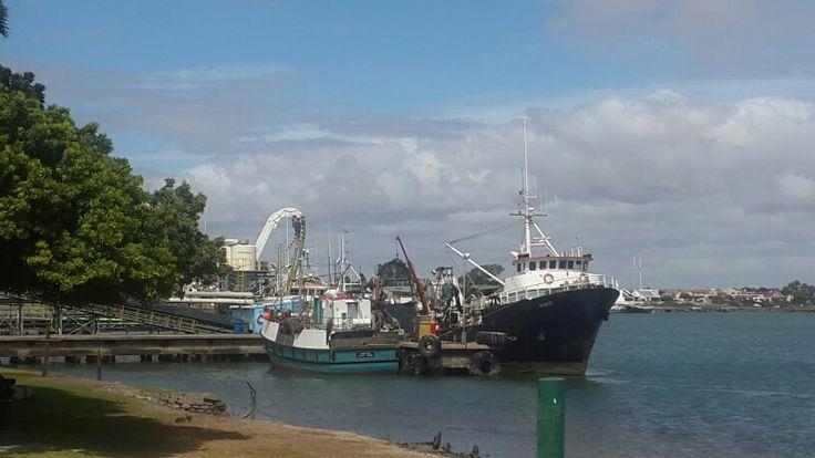 Velddrif fish trawlers