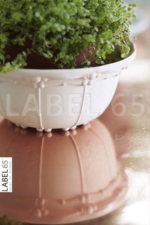 Accessoires maken uw huis af! Een mooie plant in de vensterbank zorgt ervoor dat uw jaloezieen nóg meer sfeer ademen.