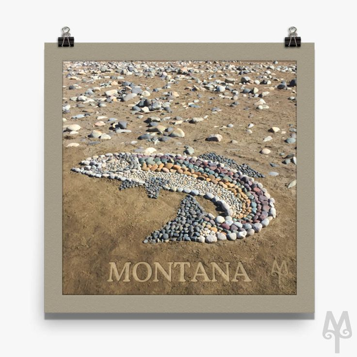 An iconic photograph of Montana Banksy's Rock Trout on the banks of the Yellowstone River is now a museum-quality poster by Montana Treasures. Show your pride in Montana and buy one now! :)