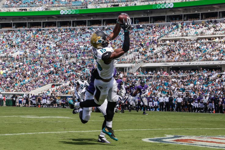 """Jaguars WR Allen Robinson ready for """"serious approach"""" in 2017 = Way back in the summer, long around the start of training camp, a lot of NFL insiders and outsiders alike thought the Jaguars might….."""