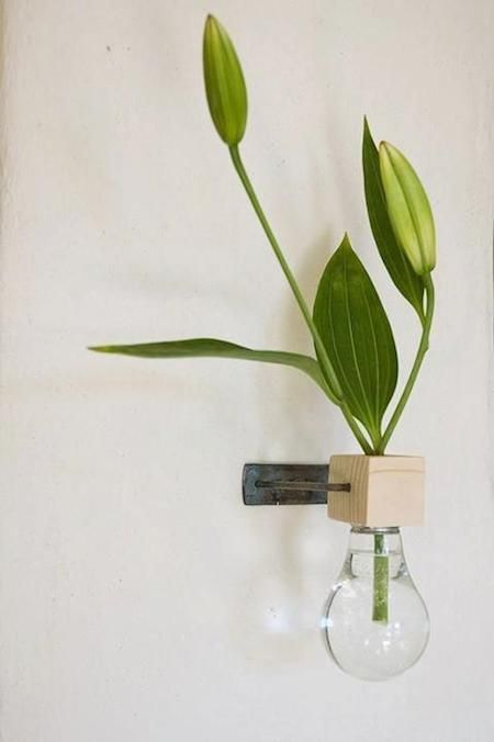 DIY Inspiration: Lightbulb Turned Wall-Mounted Vase - wonderful gift/easy to make. Happy Mom's Day!