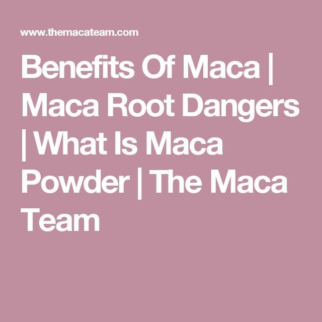 Benefits Of Maca   Maca Root Dangers   What Is Maca Powder   The Maca Team