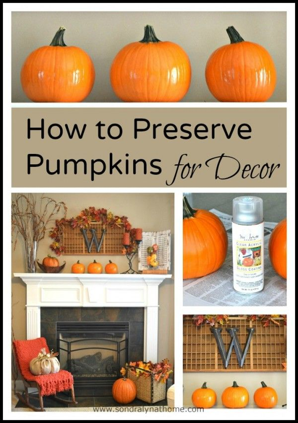 you can help your fall decor last longer by using this one hint on pumpkins and how to preserve pumpkinspreserving pumpkinsautumn decorationshalloween - How To Preserve Halloween Pumpkin