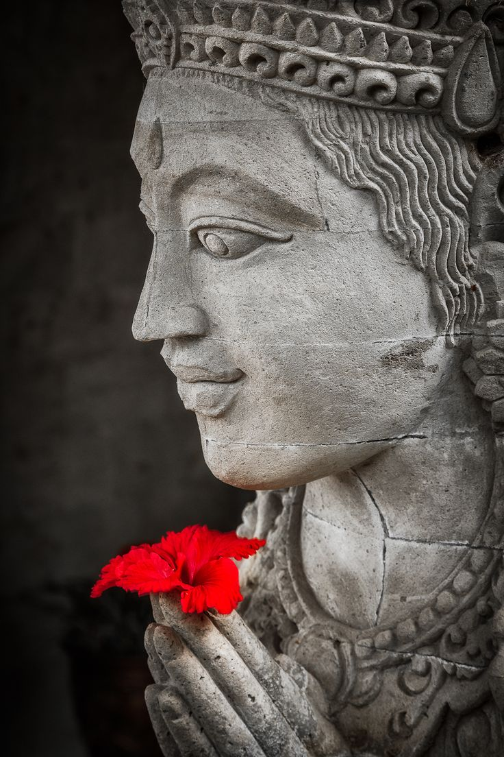 A bright red flower placed in the hands of a contemplative Buddha statue in Bali, Indonesia.