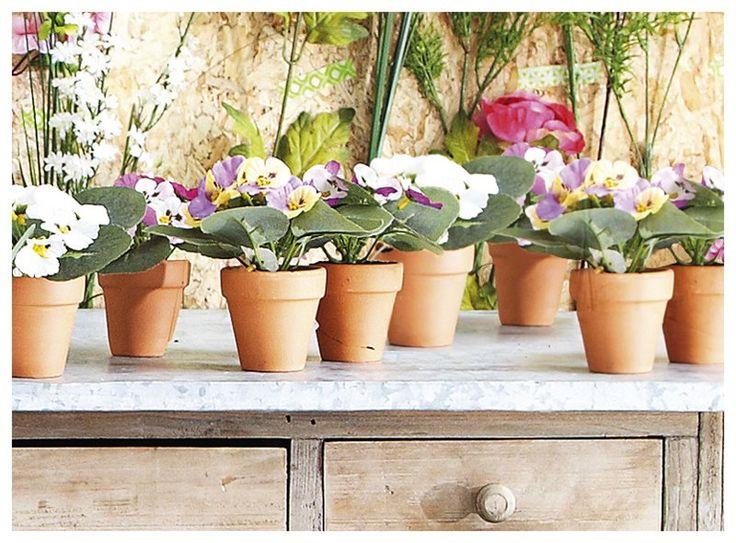 Ben jij gek op bloemen, maar vergeet je ze regelmatig water te geven? Misschien zijn deze viooltjes dan wat voor jou! Deze kleurrijke bloemen hoef je namelijk nooit water te geven. Leuk voor binnen én voor buiten!