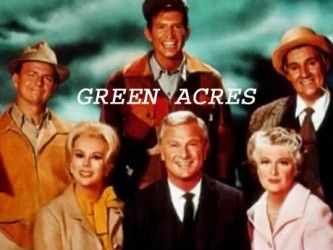 """Green Acres TV Show 1965-1971.  Oliver Wendell Douglas and wife Lisa move from a penthouse in Manhattan to a run-down shack to become farmers. Lisa is not used to running a household and can only cook rubbery hotcakes. Mr. Haney who sold them their new home is a con man. Their neighbors the Ziffle's have a """"son"""" called Arnold who loves to watch TV and is a pig! Their handyman Eb lives in the barn and calls them mom and dad."""