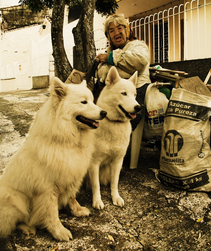 Tia Flora y los perros de San Antonio, CALI COLOMBIA