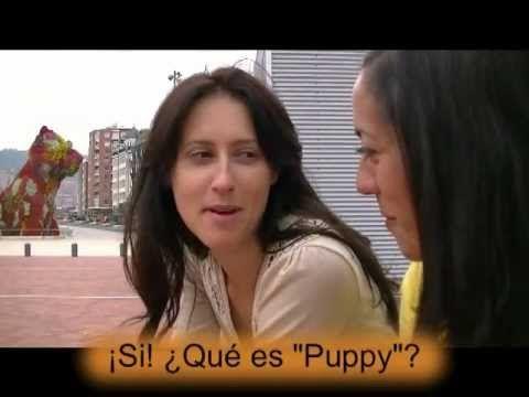 Learn Spanish at Bilbao's Guggenheim Museum (Spain) with Happy Hour Spanish
