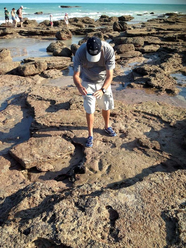 Dinosaur Footprints - Broome Broome WA is now available on RvTrips. More photos at: www.rvtrips.com.au/wa/broome/dinosaur-footprints-broome