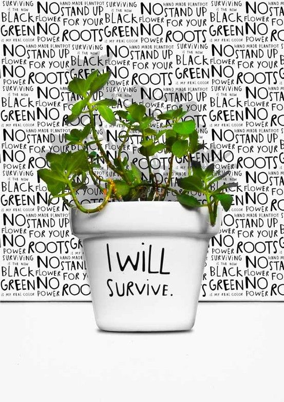 I will survive - canvas