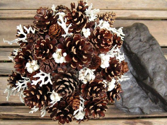 how to clean dusty pine cones