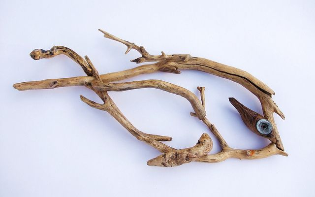 Driftwood fish 09 11 d by furidice, via Flickr