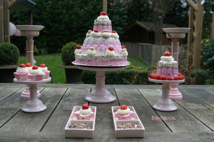 Vorige week kwam mijn vriendin Jacobien bij me langs met het idee een taart te maken. Dit keer geen gewone taart, maar een taart speciaal voor vogeltjes. Ik was meteen razend enthousiast, vooral na…