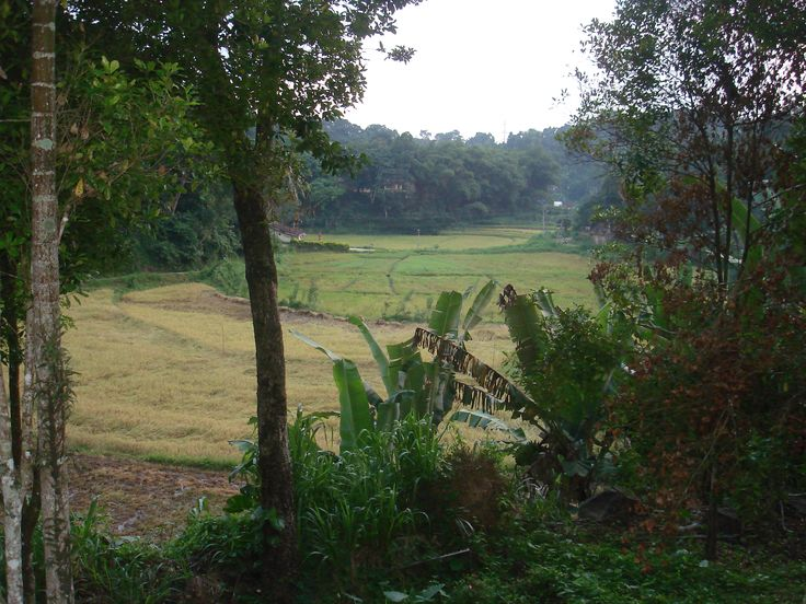Sri Lanka - Kandy - Room with a View