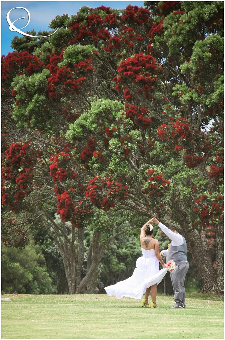 New Zealand Wedding - under the Pohutukawa trees in Paihia, Bay of Islands.  Photography by Qiane, www.Qiane.co.nz