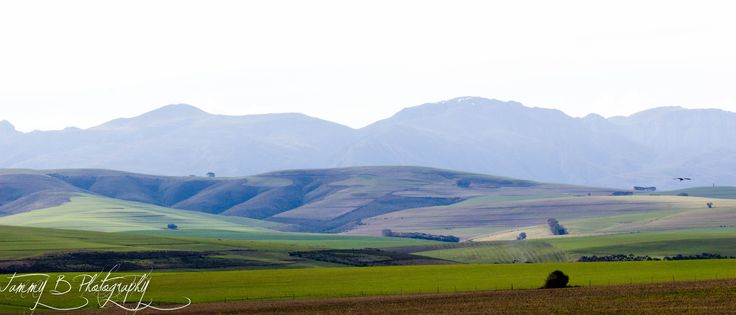 Garden Route, Southern Cape, South Africa.....mountains for miles!