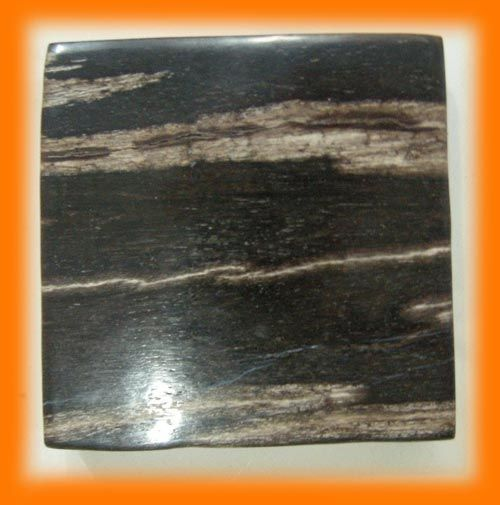 Petrified Wood Tiles