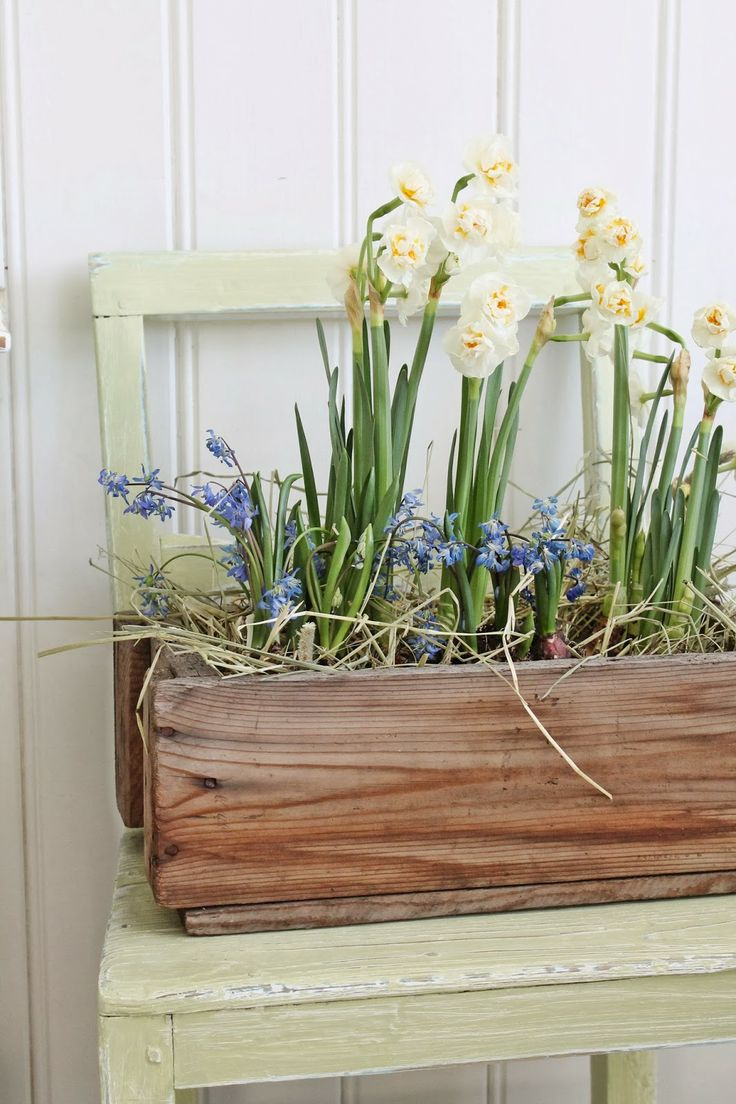 1000  images about spring & easter on pinterest