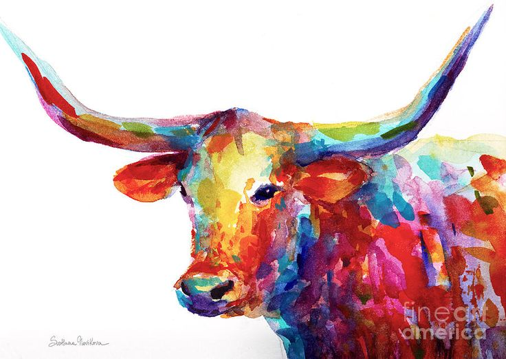 Texas Longhorn Art Painting