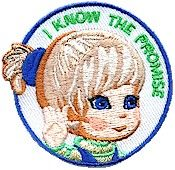 Promise Fun Patch is a great token of recognition for the scout that learns the promise. and is available at www.patchfun.com