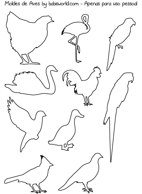 assorted bird printables