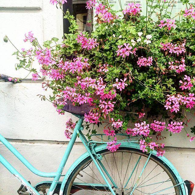 :heart: this colour combination :cherry_blossom::bike::cherry_blossom: #bikesandflowers #flowerstagram #beautifulbikes #pimpmyride #streetspot #vienna #travelbybike