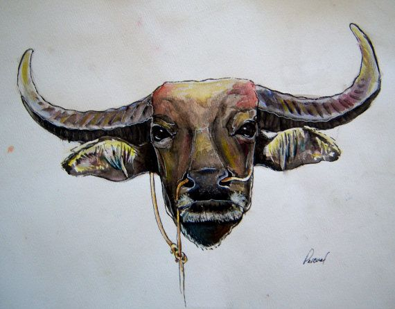 carabao watercolor filipino water buffalo 11 by pascualproductions my next tattoo. Black Bedroom Furniture Sets. Home Design Ideas