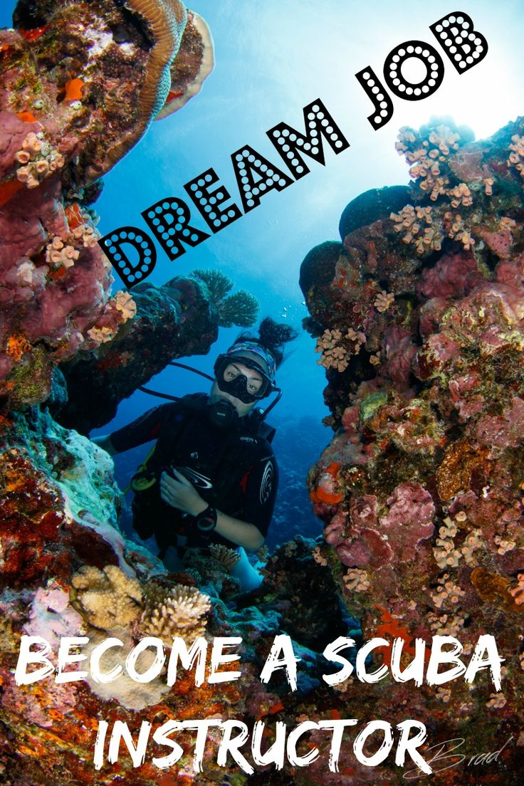 Tired of the 9 - 5? Become a scuba instructor and travel and scuba dive all over the world AND get paid! Here's everything you need to know!