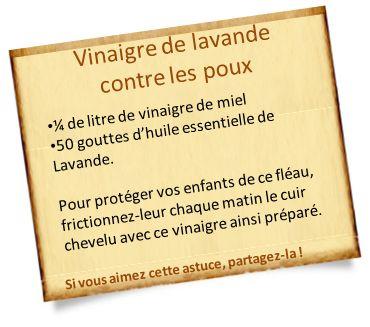 anti poux naturel vinaigre lavande