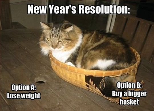 #1 Cat has a New Year's Resolution.#2 Best new year gift I've ever had.#3 GYM business in December vs. January.#4 Prepare for the New Year's Resolution.#5 No resolutions but good things you have done in the whole year.#6 Funny kid goal in new year#7 Making a...