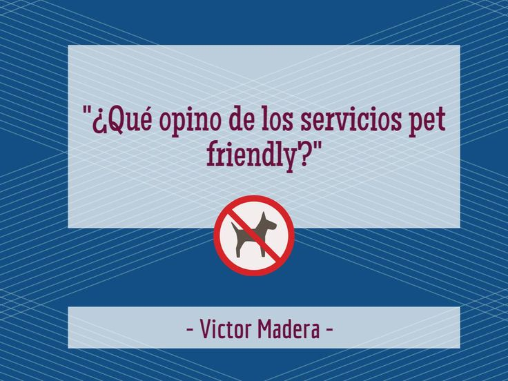 Ultimamente todo el mundo habla de los espacios animal friendly…¿Qué opinan ustedes? Yo les cuento mi punto de vista en el blog de Victor Madera Vet