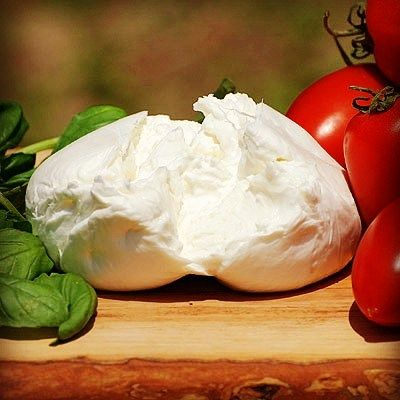 A tasty sun-kissed Buffalo Mozzarella with Tomatoes and Basil. Green, White and red: Italian style! #cheese #italy #italiancheese #food #italianfood #italianstyle #tomatoes #basil #sun #buffalo #mozzarella #buffalomozzarella