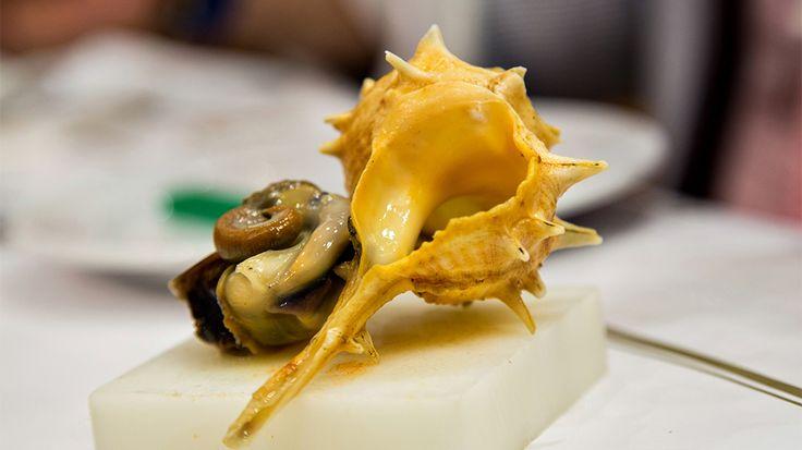 Stellar steamed whelks at Ramiro Restaurant : Bizarre Foods : TravelChannel.com
